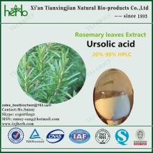 Rosemary leaves Extract Ursolic acid 77-52-1
