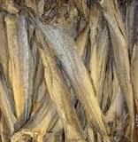 Dry Sea Horse Fish, Sardine Fish,stockfish,cod sto..