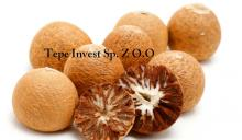 Natural Raw Dried Betel Nuts