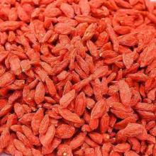 High Quality Organic Bulk Dried Goji Berry