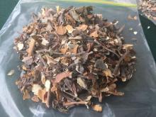 macrocystis integrifolia seaweeds Dried.
