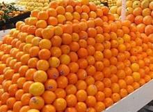 Fresh Orange Fruit from South Africa