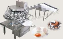 Automatic Egg Breaking Machine