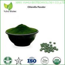 spirulina chlorella,chlorella,chlorella,chlorella vulgaris,chlorella powder