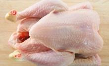 Brazil Halal Frozen Whole Chicken and Parts !! Top Supplier !!!...
