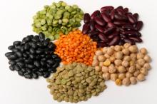 Best Quality Pulses for sale
