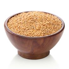 White/yellow/black mustard seed at cheap price