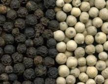 high quality low price black pepper seeds for sale