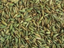 Premium Quality Pure Fennel Seeds, Spices for sale
