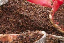 Dried Cockroaches