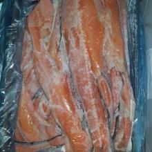 Atlantic Salmon backbones