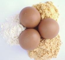 Whole Dried Egg Powder