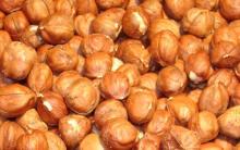 2016 New Crops Price raw hazelnut