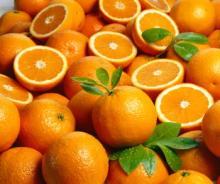 Sweet and juicy Navel Orange and Valencia Orange
