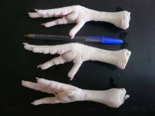 Frozen chicken feet for sale , order chicken feet for chinese market