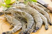 Raw black tiger shrimp (shellon)