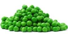 Wholesale Canned Fresh Green Peas/ Canned kernel green peas in salt