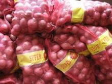onion from laiwu wanxin