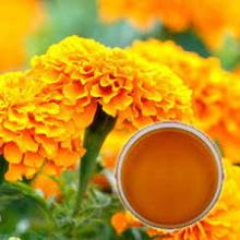 Marigold Oleoresin for sale
