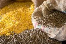 Soybean Meal Pellets,Fish Meal, Bulk Corn Gluten