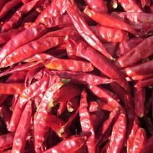 Wholesale Sun dry red hot chilli pepper in bags