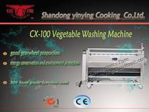 CX100/150 vegetable washing machine