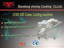 CHD100 cubes cutting machine