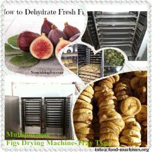 Figs Drying Machine