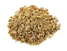 Grade A DILL Seeds