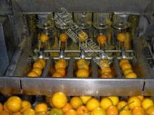 Triowin| citrus extractor