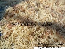 E.Cottonii/Spinosum Viet Nam_besr choices for price