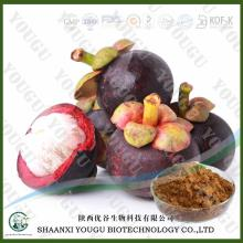 China Mangosteen Peel Extract alpha-Mangostin Xanthones