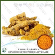 China Curcumin powder, Turmeric, Curcuma   Longa  extract powder factory