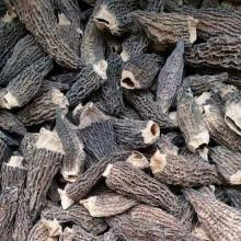 Factory Price Cap 3-8CM Cultivated Dried Morel Mushroom without Stem