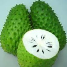 FRESH SOURSOP FRUITS - GRAVIOLA - HIGH QUALITY AND BEST PRICE