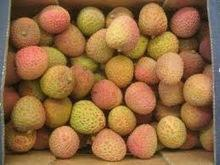 Wholesale Fresh litchi fruits