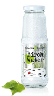 Pure Organic Birch water - Nothing added (pack of 12x250ml)