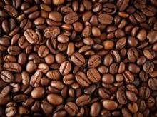 Quality Raw Arabica and Robusta Coffee Beans
