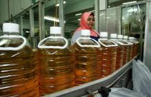 RBD Palm Oil