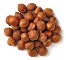 Hazelnuts / American hazelnut /Afghan hazelnut /European hazelnut