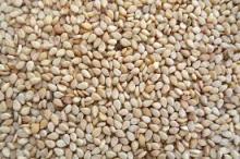 White Sesame, Black Sesame, Sesame Seeds