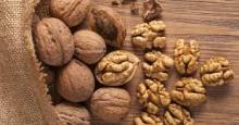 High quality raw walnuts with shell/without shell
