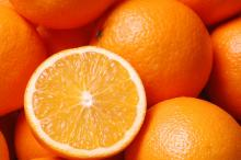 Fresh Navel and Valencia oranges