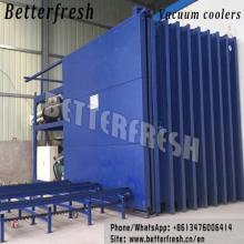 Iceberg mushroom vacuum cooler/tube/chiller/cooling machine