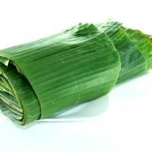 Fresh/Frozen Banana Leaf from Thailand