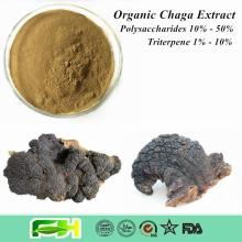 NOP/EOS Certified High Quality Organic Inonotus Obliquus / Chaga Mushroom / Chaga Extract
