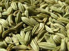 fennel seed spice
