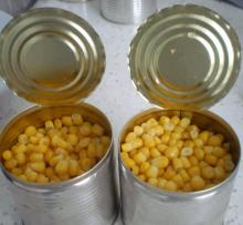 Canned Sweet Corn