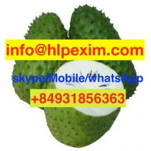 Fresh Soursop Fruit/Fresh Graviola Fruit