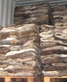 Wet/Dry Salted Donkey Hides For Sale